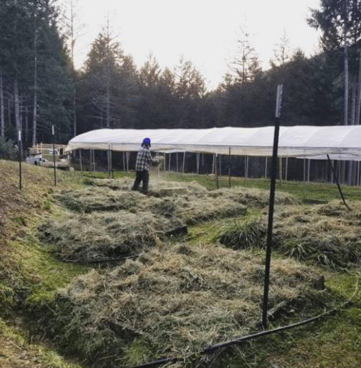 Full Cup Farmstead